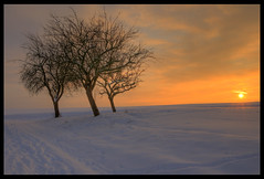 Warm winter sunset (Martin Moecklinghoff) Tags: winter sunset cold germany deutschland nikon hdr d300