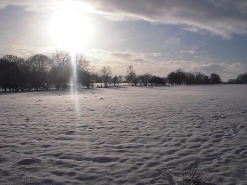 snow-fields