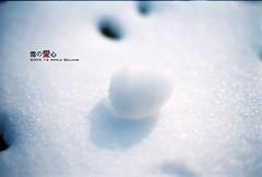 (Appleping) Tags: snow film apple 50mm nikon heart echo beijing   2009 fe2