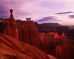 Thor's Hammer Sunrise (David Shield Photography) Tags: color sunrise utah hoodoos rockformations thorshammer threegossips brycecanyonnationa