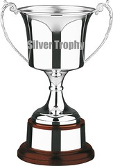 trophy for silver trophy group