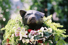 Hachiko dog statue with flowers…