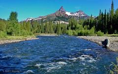 Pilot Peak and Clark Fork (Chief Bwana) Tags: mountain forest river 100views 400views 300views 200views yellowstone rockymountains wyoming 500views 600views 700views yellowstoneriver clarkfork chiefjosephhighway pilotpeak psa104 chiefbwana