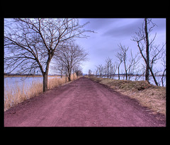 NJ Meadowlands Foot Trail (ReadyAimClick) Tags: nyc newyorkcity trees nature water canon vanishingpoint newjersey dof path perspective nj meadowlands dirt trail northamerica dirtroad depth hdr 500d photomatix foottrail newjerseymeadowlands richardwdekortepark efs1855mmislens canoneosrebelt1i