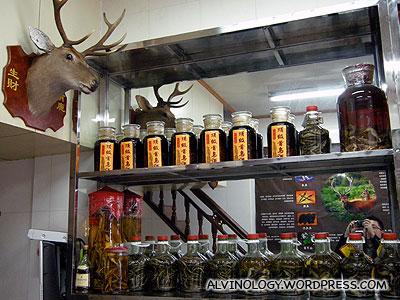 Inside the deer specialty shop