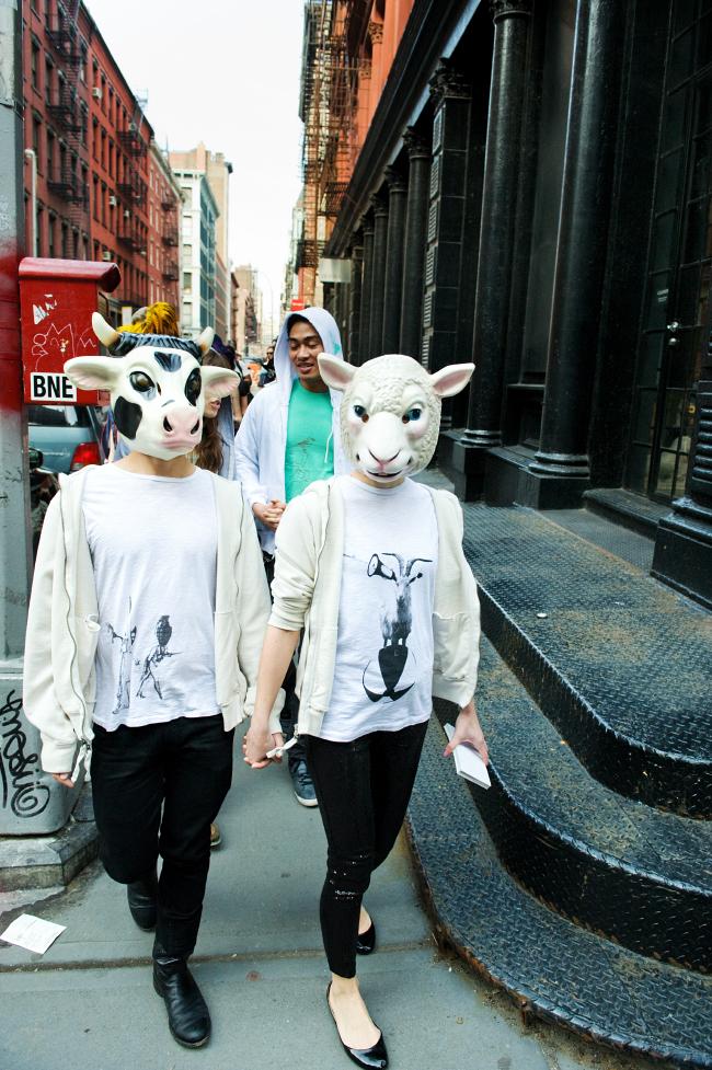 ram-hearts-cow