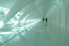 bliss (cmvoelkel (away)) Tags: leica light calatrava milwaukeeartmuseum leicadlux4