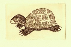 4 001 (tim.spb) Tags: original etching turtle postcard small ornament plates proverbs desigh      aquafortis