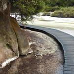 RotoruaWai-O-Tapu050 thumbnail
