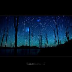 Everything that Physically Exists - The Magellanic Clouds ([ Kane ]) Tags: stars couds sky night qld lake dark trees lakemoogerah moogerah 50d startrails 1020mm kanegledhill celestialpoles celestial southpole south themagellanicclouds magellanicclouds smallmagellaniccloud largemagellaniccloud galaxies milkyway —obramaestra— kane gledhill wwwhumanhabitscomau kanegledhillphotography wow brilliant