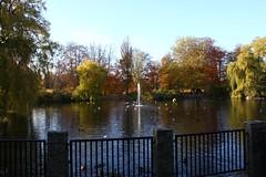 Fontänen i stadsparken
