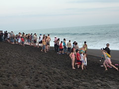 People congregating for the turtle release.