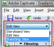 Choose Edit View in Adobe Captivate