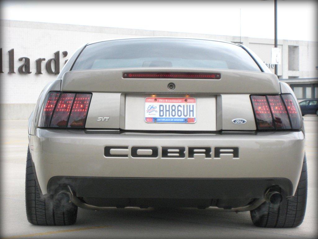 Mineral Grey SVT Cobra - NBM