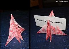 Tsuru Porta-Cartão