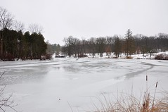 I told you it got cold! (christiaan_25) Tags: trees winter white lake snow ice landscape frozen woods december alone view perspective mortonarboretum lakemarmo butstillfall