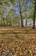 """Autumn in The Hague • <a style=""""font-size:0.8em;"""" href=""""http://www.flickr.com/photos/45090765@N05/4205915545/"""" target=""""_blank"""">View on Flickr</a>"""