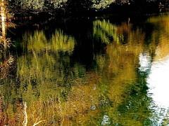 last autumn reflections (florenarocena) Tags: autumn fall automne reflections herbst otoo reflexions reflets reflejos riflesso blueribbonwinner diamondclassphotographer flickrdiamond goldstaraward mtrtrophyshot