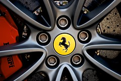 red horse black wheel yellow composite mexico spider nikon stripes nuts ferrari brakes bolts carbon fiber rim rims cf prancing 430 pininfarina d60 caliper lugs drilled 16m suderia