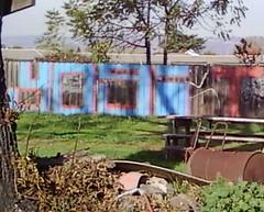 yogi (graffiti oakland) Tags: graffiti oakland shot freeway yogi tbs mbt tbsk