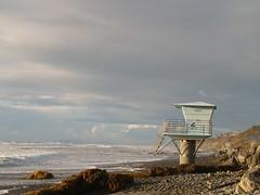P1228841 (Postcards to Paris) Tags: beach state pines torrey