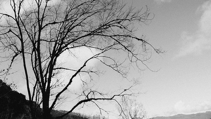 仙女落下的珍珠~加羅湖