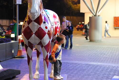 Future jockey?