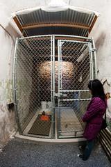 Guantanamo Bay cell