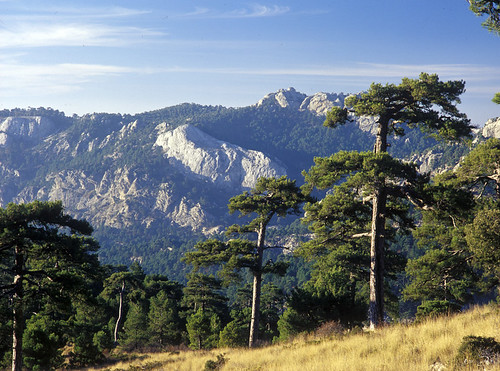 Parque Natural sierras de Cazorla, Segura y Las Villas