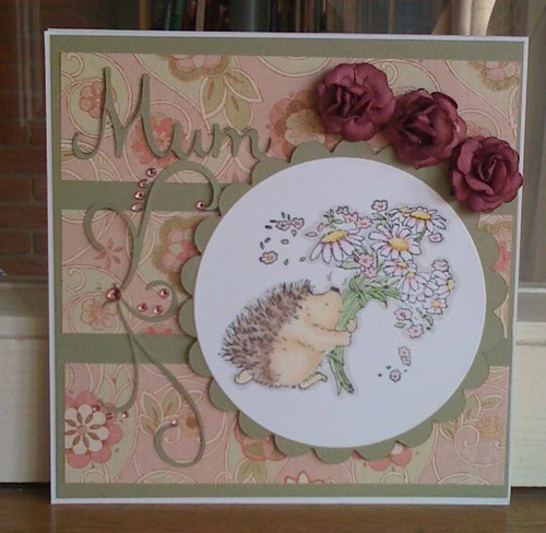 Hedgie for Mum