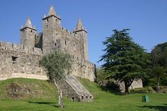Castelo da Feira (moacirdsp) Tags: santa portugal maria feira da castelo 2008 aveiro ilustrarportugal