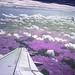 Purpleland (Infrared)