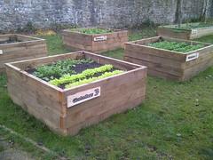 Llanyrafon Manor Kitchen Garden