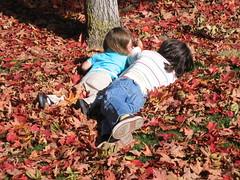 Leaf love 3
