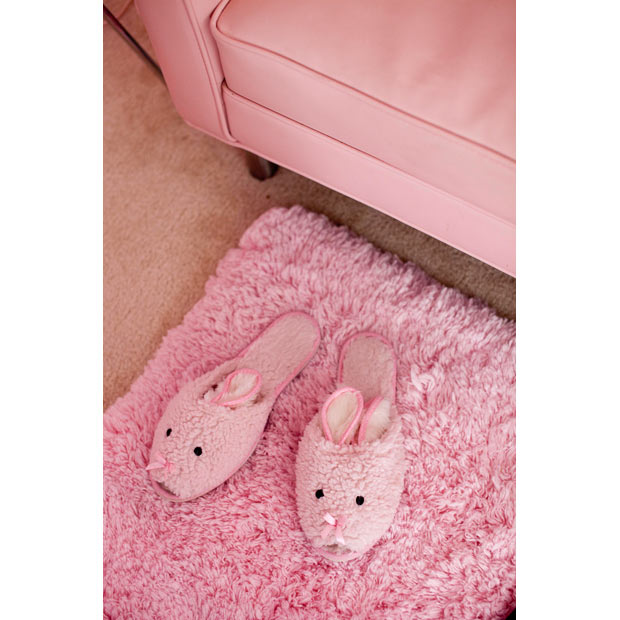 13_pink-slippers_1515529i
