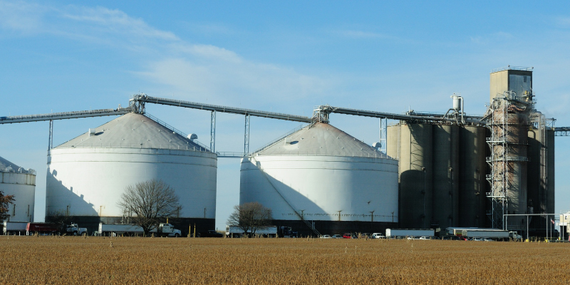 Busy Day at the Grain Elevator