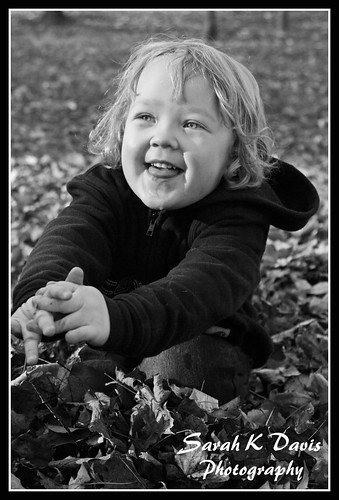 Addison's Fall Portraits
