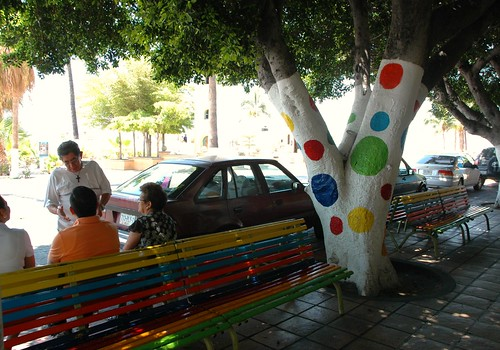 Pokadot tree and rainbow bench, people chatting, parked cars on the main street, La Paz, Baja California Sur, Mexico by Wonderlane