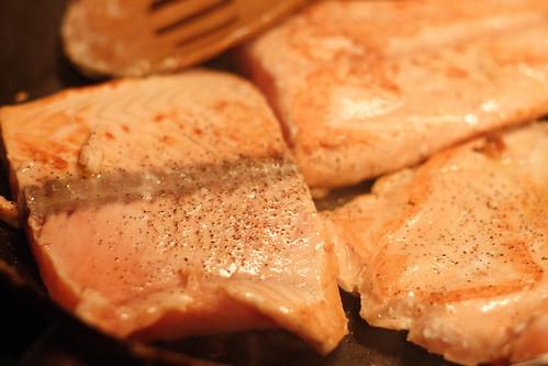 SalmonSoup2