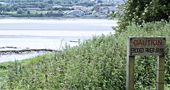 Eroded River Bank (foxhill101) Tags: runcorn widnes spikeisland rivermersey
