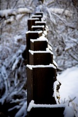 Metal Posts (theubersquid) Tags: winter snow cold river utah depthoffield saltlakecity metalpost tannerpark