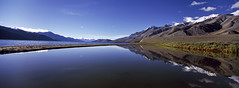 Pangong Tso (KrivicMatjaz; www.krivic.com) Tags: travel blue panorama india mountain snow cold reflection film nature beautiful clouds sunrise scenery asia catchycolours scenic tibet hasselblad himalaya paysage xpan horizont velvia50 northindia jammuandkashmir pangongtso littletibet wondersofnature matjaz krivic