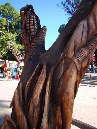 Parque de Tehuacán, Pue. (9)