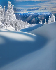 Vancouver-Mt Seymour Provincial Park BC Canada (kevin mcneal) Tags: canada vancouver britishcolumbia lowermainland mountseymourprovincialpark natureselegantshots