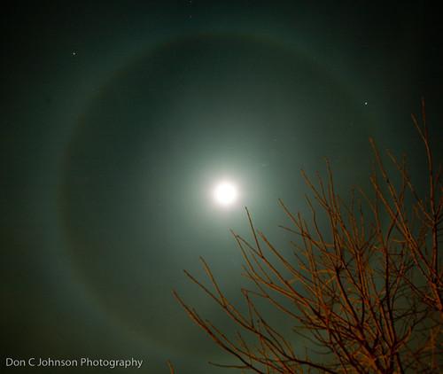 MoonshotFBa-218