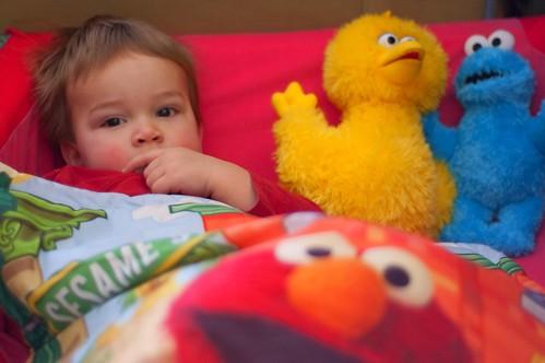 377:1000 Lucas loves Sesame Street
