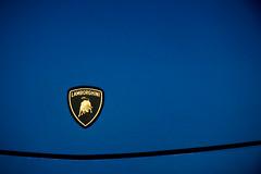 Lamborghini Gallardo LP560-4 (erdero) Tags: new morning blue detail hongkong drive sunday hong kong tai badge mei lamborghini tuk wpi territories gallardo 2010 smd iqp lp560 lp5604 fchat