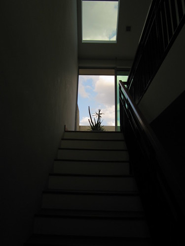 Looking up the top stairs