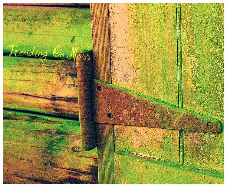 Hinge-Moss