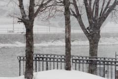 Snow Studies 8